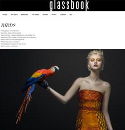 Glassbook BIRDS editorial