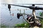 Horgászat amúrra