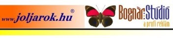 Pillangószív fejléc terve