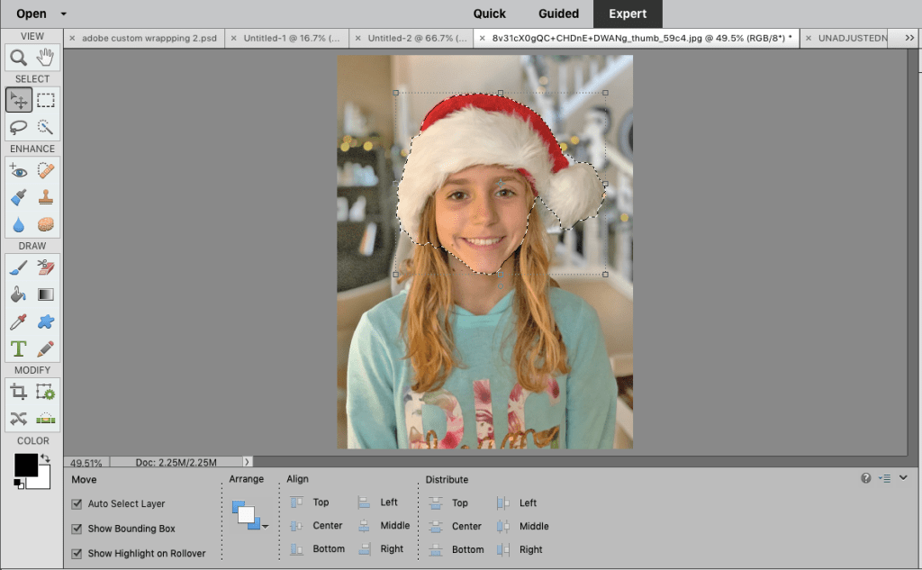 Adobe photoshop  elements 2019 quick selection tool