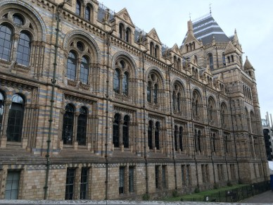The Natural History Museum