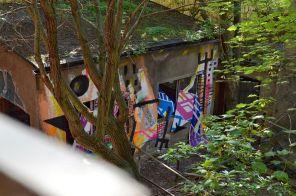 IBUG2017-SPEMAFA-Chemnitz_28