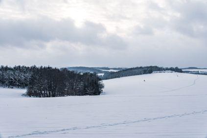 20210116_Winter-14