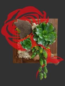 Création floral/image Fleurs de Provence 2