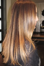 brunette hair color chart page
