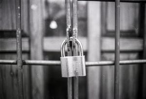 MySQL Root Password