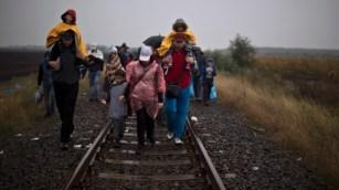 hungary-migrants