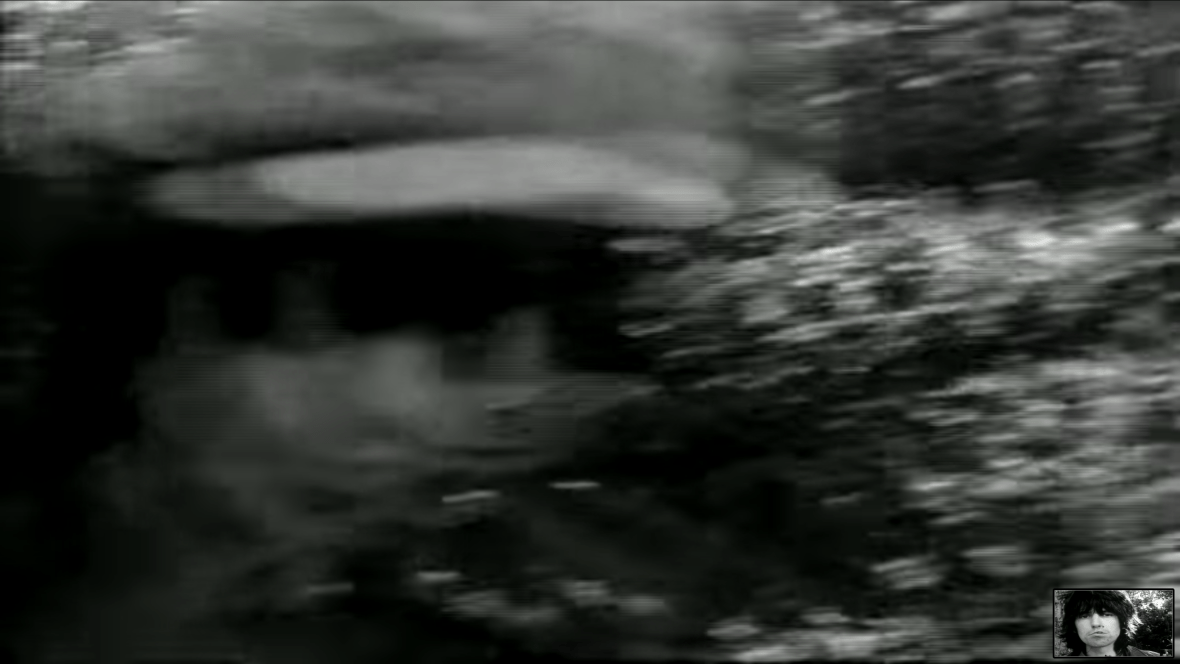 A blurred black and white video screen shot of a mans face.