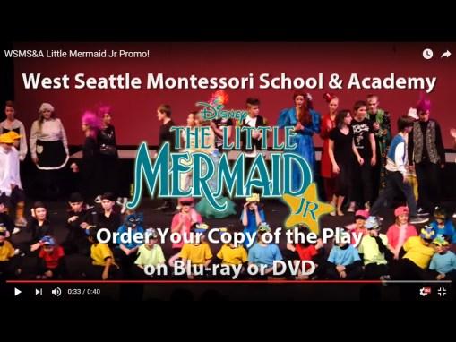 WSMS&A School Play 2016