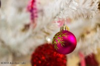 Ornament_IMG_1486