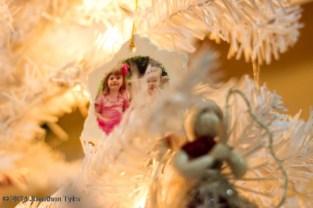 Ornament_IMG_1492