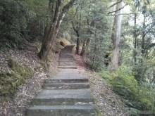 Alishan - mountain trail 1