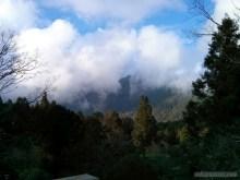 Alishan - scenery 4