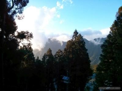 Alishan - scenery 8