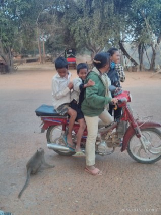 Angkor Archaeological Park - monkey trouble 1