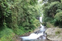 Bali travel - waterfall 1