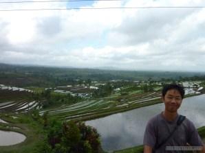 Balinese rice terraces - portrait 4
