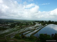 Balinese rice terraces - scenery 14