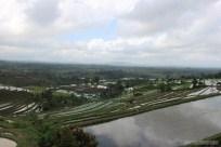 Balinese rice terraces - scenery 8