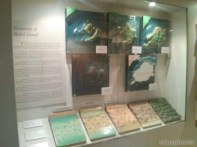 Bohol - Tagbilaran national museum 2