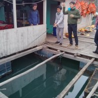 Cat Ba - Halong Bay tour fish farm fishing