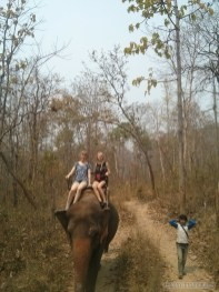 Chiang Mai trekking - elephant riding 6