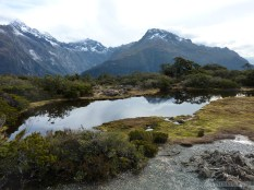 Fiordlands - scenery 5