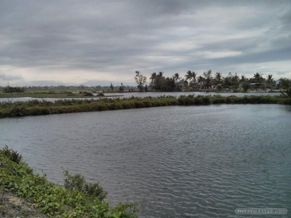 Hoi An - biking lake view 3