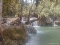 Luang Prabang - Kuang Si waterfall 5