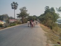 Mandalay - biking around Ayeyarwady river 3