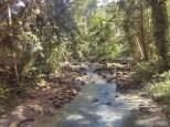 Moalboal - Kawasan water falls path 3