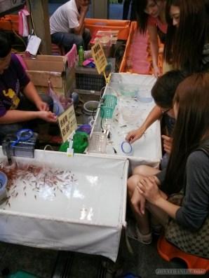 Night Market - goldfish scooping 2
