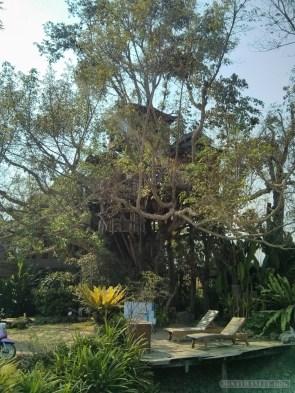 Pai - Pai treehouse 4
