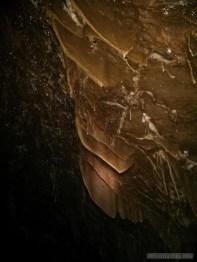 Pang Mapha - caving trip fossil cave 2