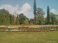 Pyin U Lwin - National Kandawgyi Gardens 7