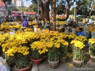 Saigon during Tet - flower market 2
