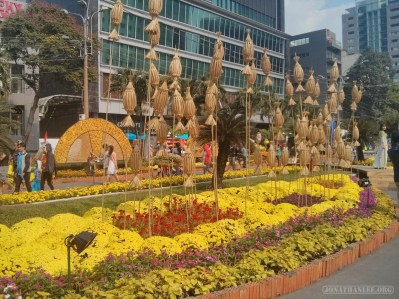 Saigon during Tet - flower street 17