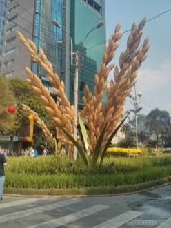 Saigon during Tet - flower street 28