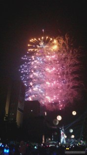 Taipei 101 New Years fireworks - fireworks 2