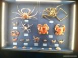 Taitung - Amis folk center crabs
