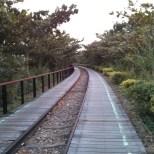 Taitung - converted railway 1