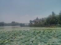 Yangon - Kandawgyi lake park 4