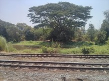 Yangon - circular train view 1