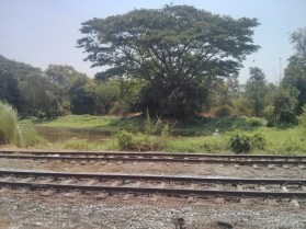 Yangon - circular train view 1