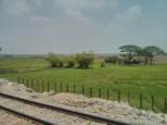 Yangon - circular train view 10
