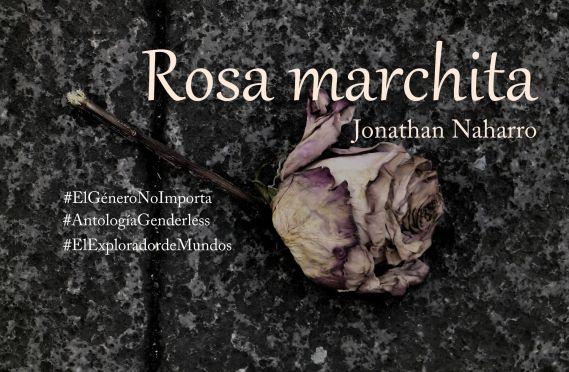 Rosa marchita (microrrelato)