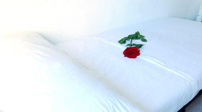 En el corazón de una rosa (microrrelato), de Núria Sancho Subirats