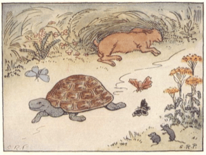 The Tortoise and the Hare – The Forgotten Challenge!