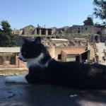 Day 5 – Sorrento and Pompeii