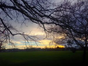 Tooting Bec Common, Christmas Day 2013